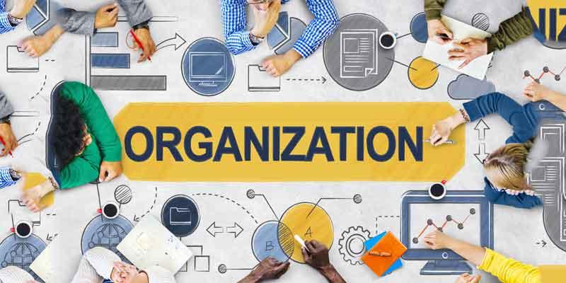 Sturdy Organization Skills